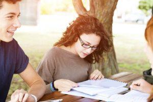 blog yazısı University
