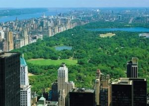 Kaplan Dil Okulu New York Central Park